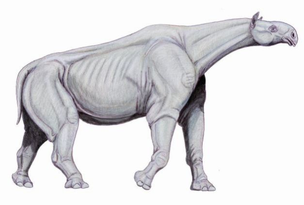 1024px-Indricotherium11