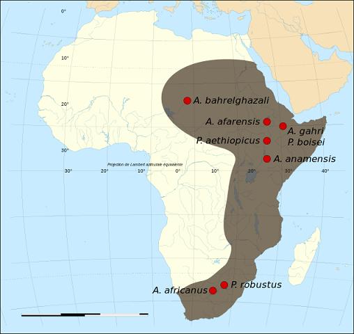 Distribución en un mapa de los hallazgos de Australophitecus