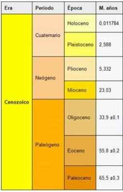 Cronología de la prehistoria. La Era Cenozoica y sus respectivos periodos