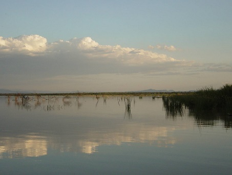 Lake_baringo