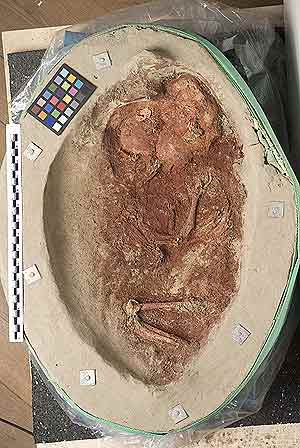 Yacimiento funerario de un bebé del Paleolítico Superior