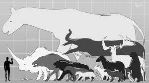 Comparación del tamaño del ser humano con la megafauna