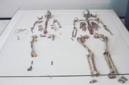 Huesos encontrados en Oberkassel