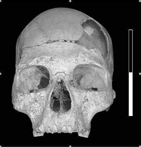 Cráneo de Pestera Cu Oase