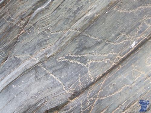 Representación rupestre del yacimiento de Siega Verde