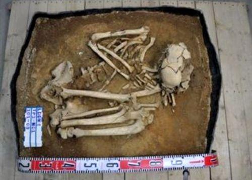 Esqueleto neolítico hallado en Taiwan