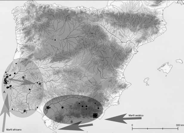 Mapa que muestra la distribución del marfil en la Península Ibérica de inicios del calcolítico