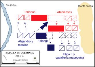 Gráfico que muestra los movimientos en la batalla de Queronea, librada por Filipo II de Macedonia