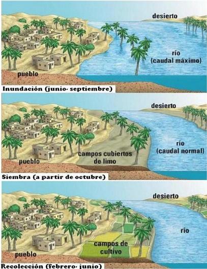 Imagen que explica de forma sencilla el ciclo de crecidas y cosechas, base de la alimentación en el antiguo Egipto