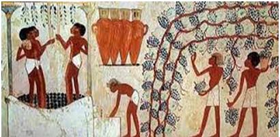 Relieve en el que podemos observar la recogida de las uvas y la fabricación del vino
