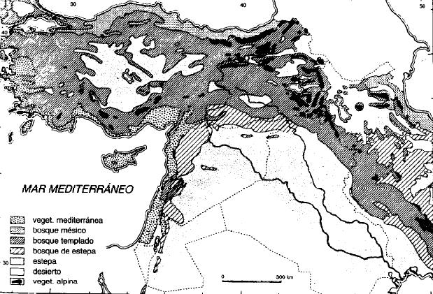 Mapa vegetal del Antiguo Oriente Próximo