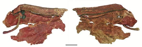Fragmentos de cuero que formaban parte del revestimiento de un carro egipcio