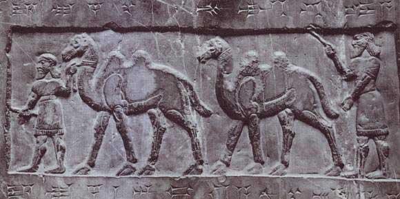 Relieve en el que se muestran los camellos del rey medioasirio Salmanassar I (1273-1244 a.C.)