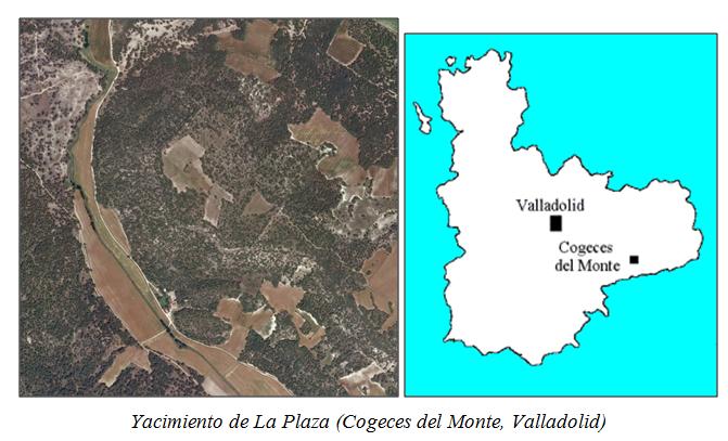 Vista desde arriba y ubicación del yacimiento de la Plaza, en Cogeces del Monte