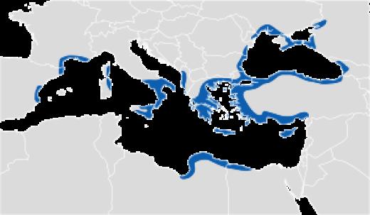 El mundo griego a mediados del siglo VI a.C.